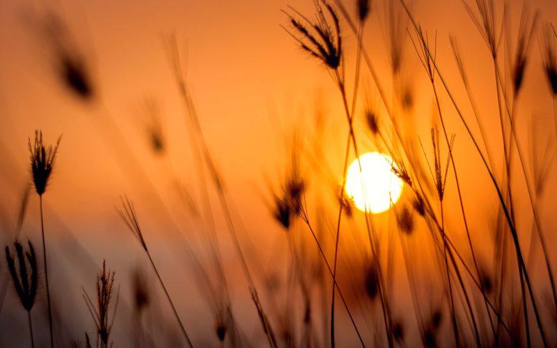 3 травня – День Сонця